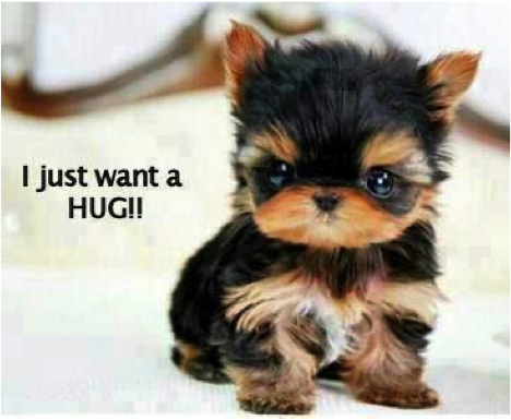 i-just-want-a-hug